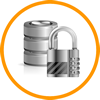 iStore - Encryption Module of the iGuana iDM Document Management Software (DMS)