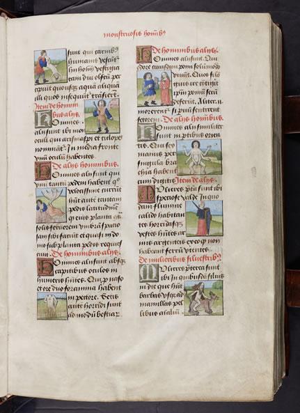 Scanned Image from Manuscript - Thomas van Cantimpré, De natura rerum (15th Century)