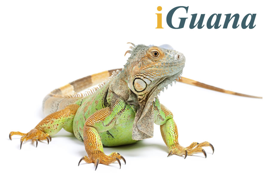 iGuana - Enterprise Content Management